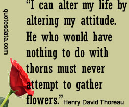Pict ure Henry David Thoreau Quotes